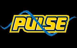 Pulse Netball